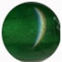 9436 Grass-Green  20 gram