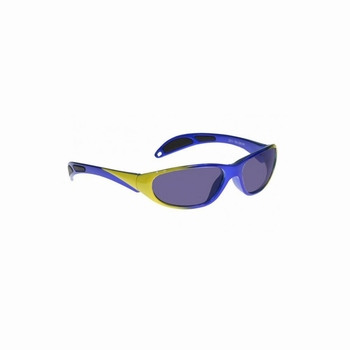 Didymium bril Philips 208 serie blue/yellow  GB-P2-208BY