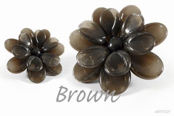 Asian Brown 250 gram