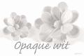 Asian White Opaque 250 gram