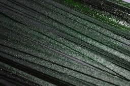Effetre Aventurijn Green ribbon