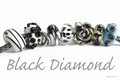 Bella Donna Black Diamond