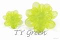 Asian TY Green 250 gram new!