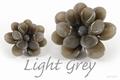 Asian Light Grey 250 gram new!