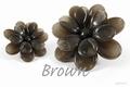 Asian  Brown 250 gram new!