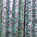 Emerald Crinkle